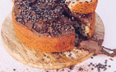 Choc Chip Mayonnaise Cake