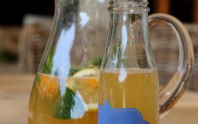 Citrus Wine Spritzer